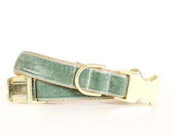 Autumn Velvet Dog Collar in Sage - Fall Dog Collar in Blue Green - Classic Velvet - Vintage Style