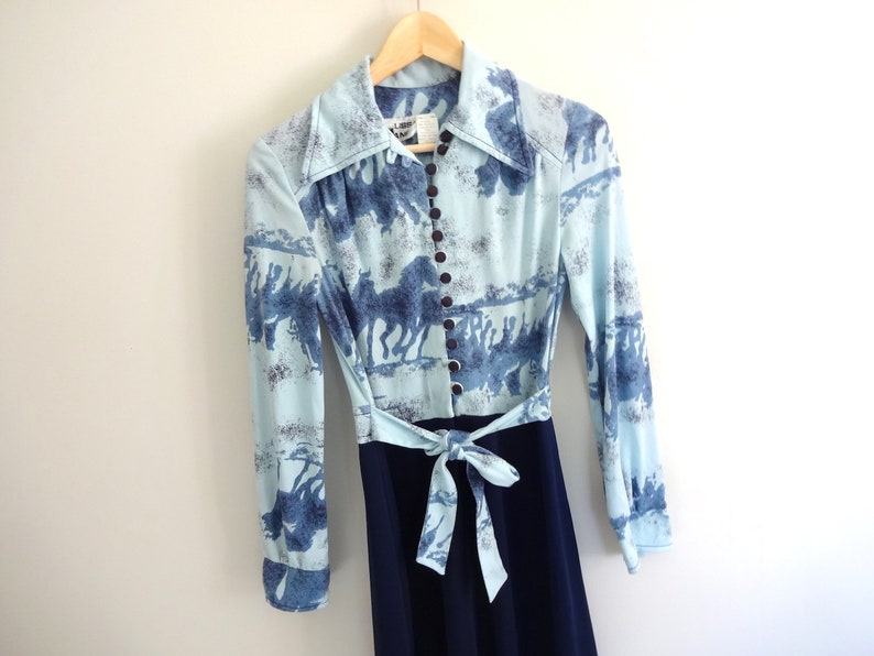 Vintage EQUESTRIAN Dress  1970s Clothing  Light Blue Long image 0