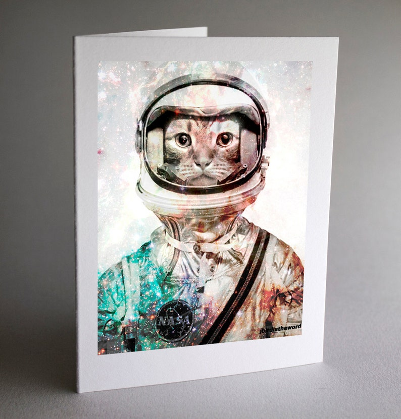 Stationery Ideas Cat Note Cards Cheer Up Gift Secret Santa Creepy Coworker Exchange Greeting Card Set Pet Funeral Office Gifts Idea