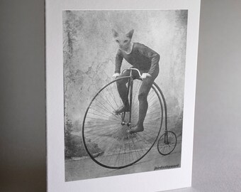 Cat on Bike, Cat Card, 6 Note Cards, Cat Note Cards, Notecard, Thank You Card, Note Card, Note Cards, Handmade Card, Card Set ,Greeting Card