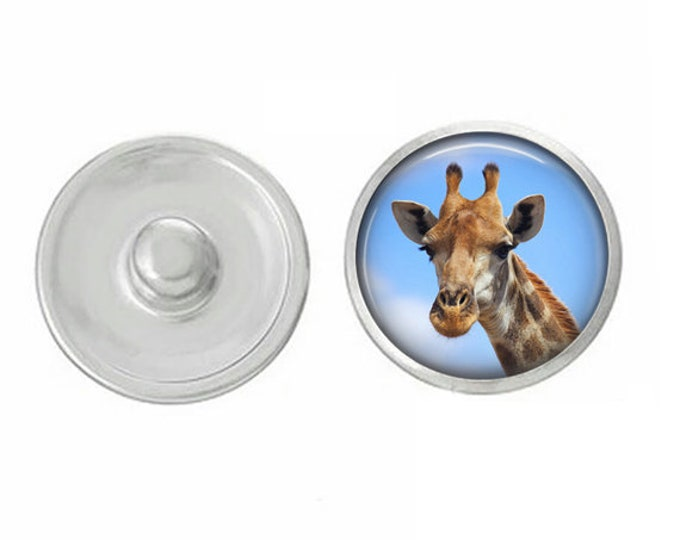Giraffe Themed Snaps - Assorted Snaps - Coordinates with All of Our Base Pieces - Giraffe - Animals - Animal Snap Jewelry