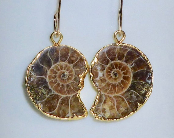 Small Ammonite Fossil Earrings on Artisan Handmade Gold Filled Earwires
