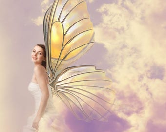 Beautiful printable Fairy Wing transparent  HiRes .png overlays, 24 separate files in various colours and poses to download