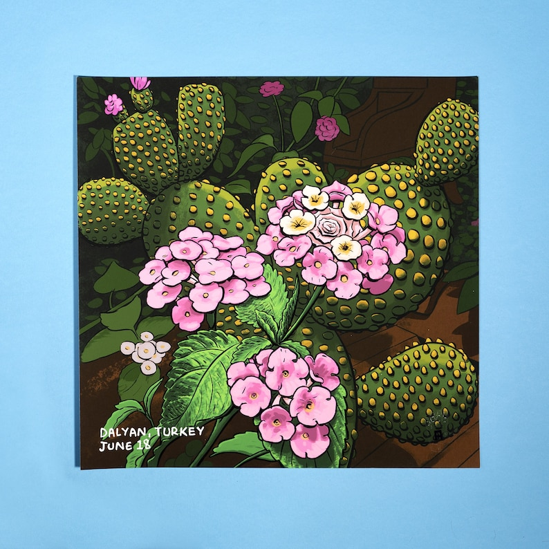 Cactus illustration gicleé art print image 0