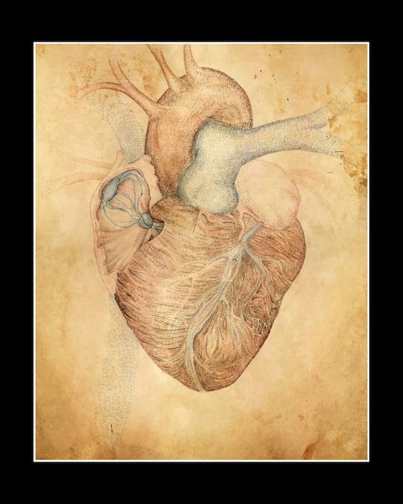 Menschlichen Herzens 11 x 14 Papierdruck unter Schwarz Matt   Etsy