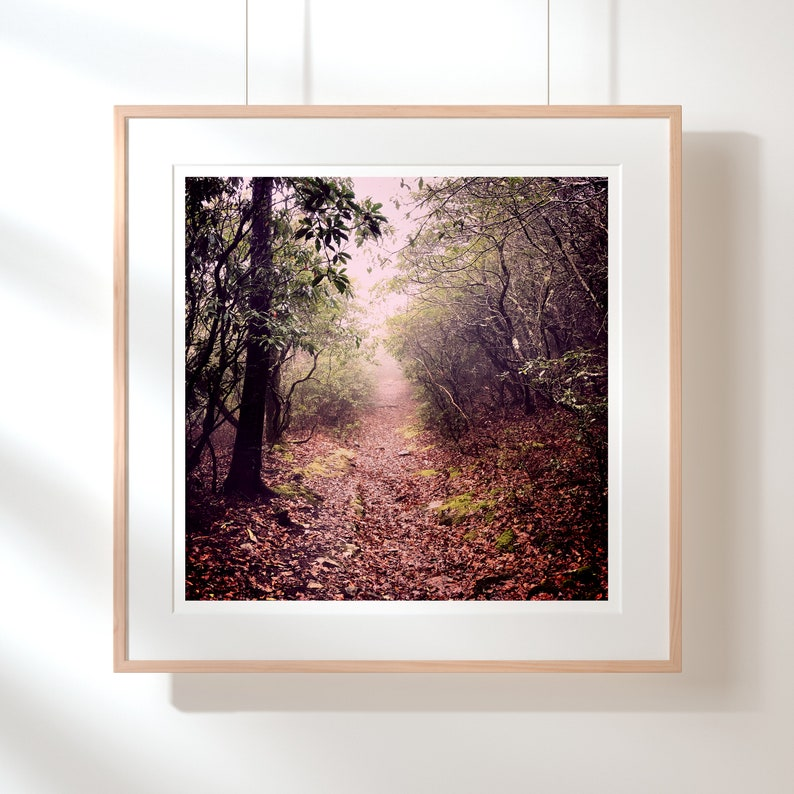 Mountain Landscape in the Fog Photography Square Art Print