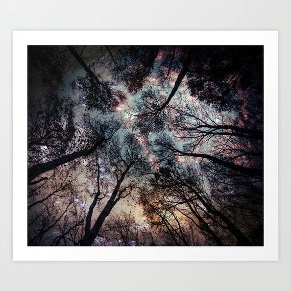 trend nature Stars mystic trees Dorm night sky Zen bedroom Woods Starry Sky in the Forest Pillow Shams Set of 2 Pillow Cover calm
