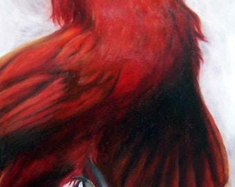 Deliverane Open Edition fine art print, death and deliverance, Cardinal bird, beauty in death