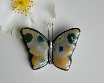 Entomology Brooch