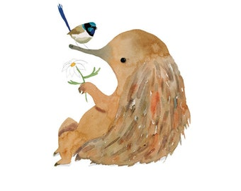Echidna and Wren!... A4 Giclee Print of Illustration (8.5 x 11 inches).
