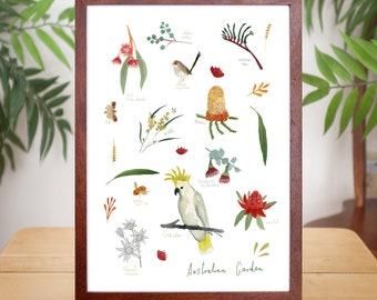 Australian Natives - Giclee Print of the Australian Garden, sized A4 or A3