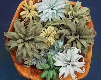 Tillandsia Airplant: Handmade Crepe Paper Plant