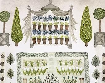 LARGE Spring Garden Auricula Theatre Print, giclee print, garden plan, english garden illustration, primula, watercolor reproduction