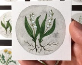 Lily of the Valley No. 5, miniature painting, original watercolor painting, botanical painting, woodland flowers
