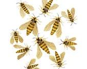 Hornet Moths Print, bees print, giclee art print, watercolour, watercolor print