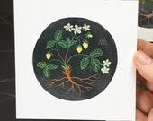 Heirloom Pineapple Strawberries No. 2, miniature painting, original watercolor painting, botanical painting, fruit