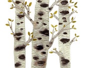 Birch Trees Print, giclee print,  woodland decor, birch bark, nature illustration, watercolor print, nature art