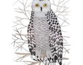 Snowy Owl Print, bird art, owl illustration, forest birds, giclee art print, watercolor print, winter bird art, watercolour
