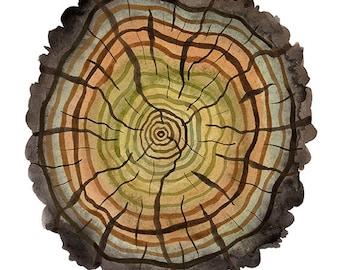 peaty log print, tree rings illustration, giclee art print, reproduction watercolor, woodland, autumn