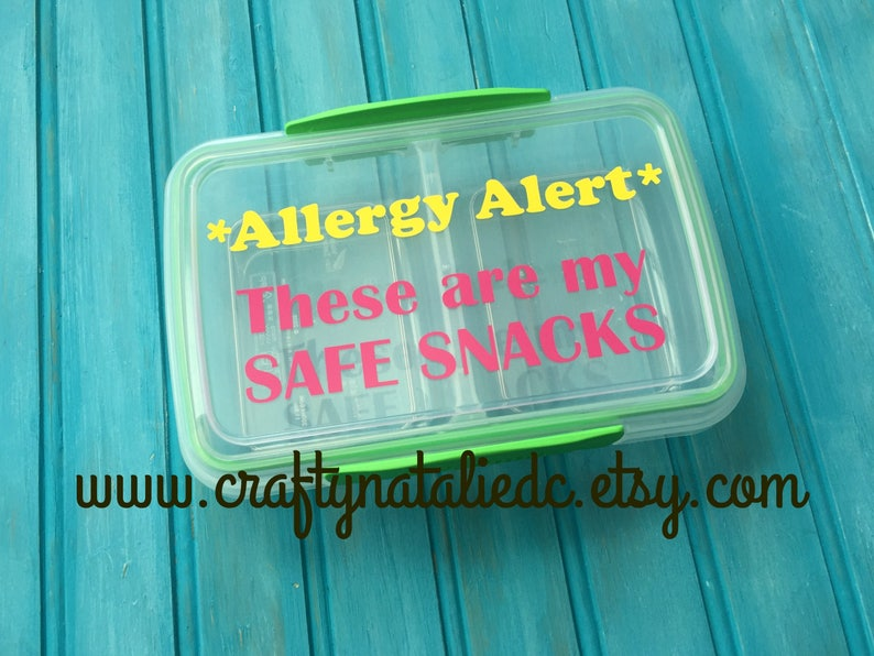 Food Allergy Divided Snack Container Safe Snack Container image 0
