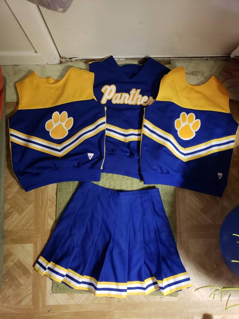 bd68d75e9fa Vintage Cheerleaders Costume Skirt and 2 Tops PANTHERS