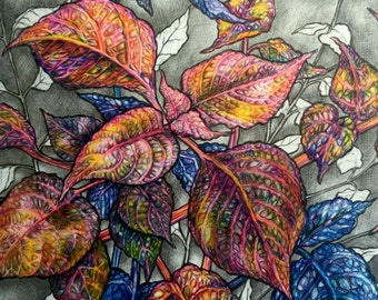 Framed Original Colored Pencil Drawing, Coleus Original Framed Art, Original Colored Leaves Nature Drawing, Blue Purple Red Leaf Drawing