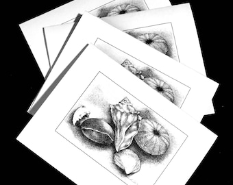Seashell Note Cards Set of 4, Blank Card Set, Original Art Seashell Note Cards, Seashell Urchin Card Set, Art from Original Drawing Cards