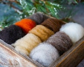 Natural Colors Wool Sampler for Needle Felting -  Premium Needle Felting Wool - Raised in America