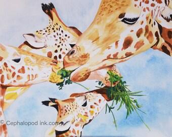 Giraffe #2 Art Print Watercolor 8x10