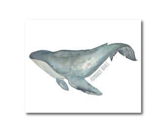Whale Watercolor, Humpback Whale Ocean Watercolor Illustration, Beach Decor, Nautical, Wall Art, Art Print, Whale Art, Nursery