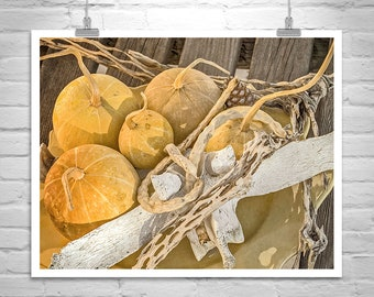 Gourd Art, Still Life Photography, Southwestern Decor, Fine Art Photography, Southwest Art, Autumn Art, Picture Gift, Still Life Art