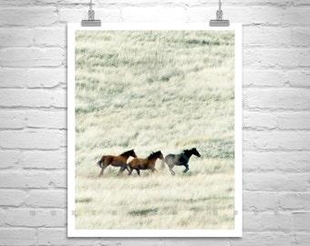 Horse Photography, Horse Art, Horse Print, Horse Picture, Wild Horses, Equestrian Art, Prairie Landscape, Ranch Art, Equine Art, Horse Gift