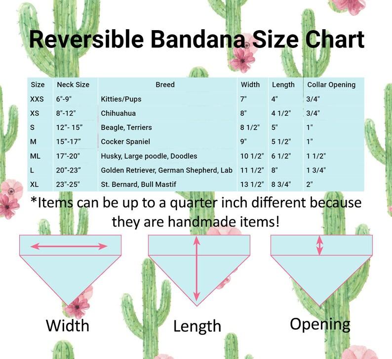 Cactus Reversible Bandana