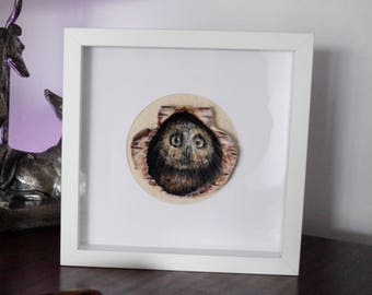 Painted Owl on Scallop Shell, Framed