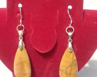Picture Jasper Teardrop Dangle Earrings