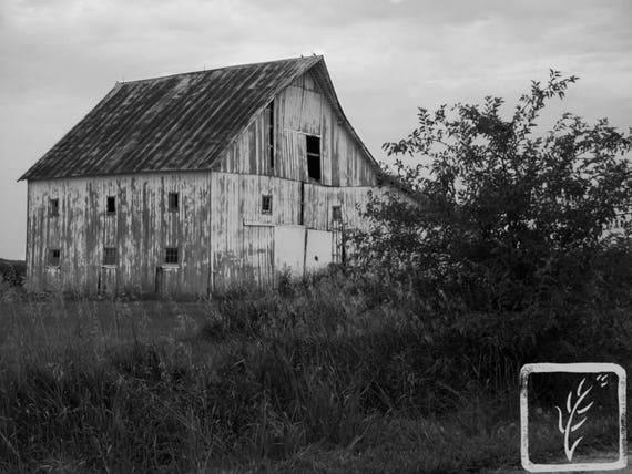 """""""Homecoming,"""" Rural Indiana, 2011."""