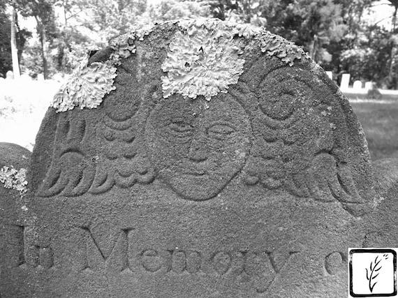 """In Memory Of,"" Old Huntington Burying Ground, Huntington, New York, 2013."