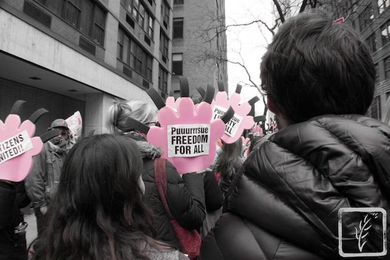 """""""Purrsue Freedom,"""" New York City Women's March, 2017."""