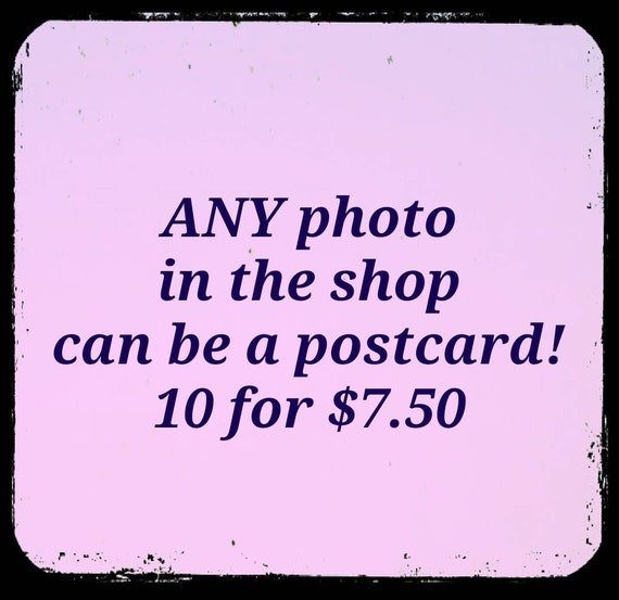 Ten Postcards of Any One Photo in the Shop