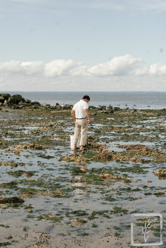 """""""Digging Clams II,"""" Crab Meadow, Northport, New York, 2017."""