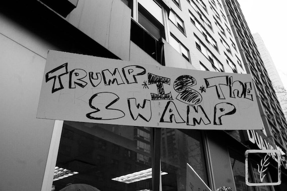 """Trump is the Swamp,"" New York City Women's March, 2017."