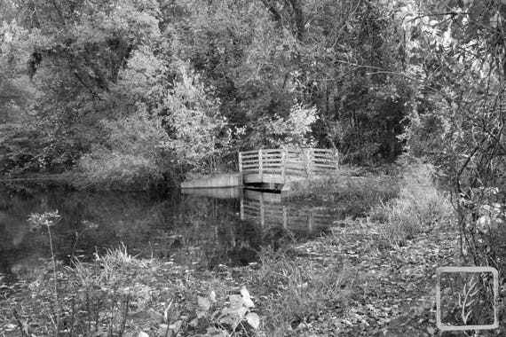 """""""Little Bridge,"""" Lloyd Harbor, New York, 2016."""