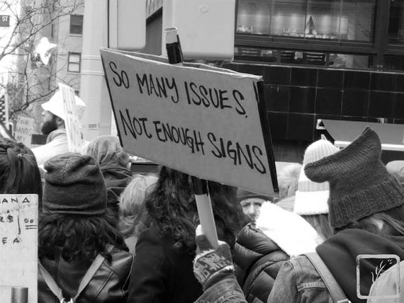 """""""So Many Issues,"""" New York City Women's March, 2017."""