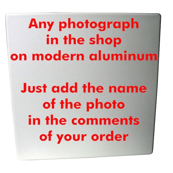 Aluminum print of any photo in the shop, variety of sizes