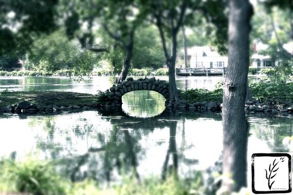 """Overgrown,"" Heckscher Park, Huntington, New York, 2015."