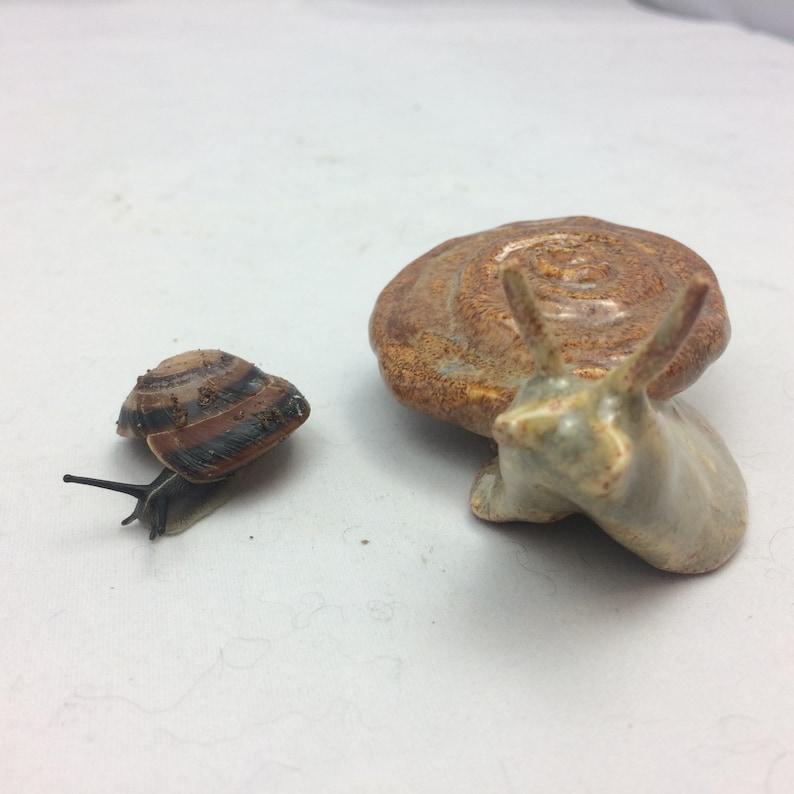 Ceramic Porcelain Hand Sculpted Land Snail
