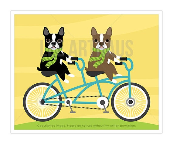 75D Dog Print Two Boston Terriers on Bicycle Wall Art
