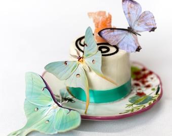 Wholesale 10 Pack Set - Luna Moths and Morpho Butterflies Papercut Decoration