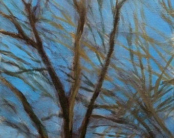 Spring Skies VIII: Sky Blue Maple - small affordable fine art painting by Irene Stapleford - wantknot shop