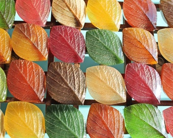 SALE! Autumn Leaf soap - Thanksgiving - hostess gift - Autumn Fall